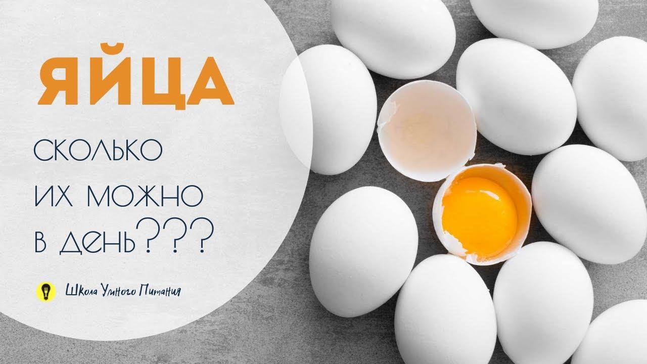 Яйца - сколько их можно есть в день?