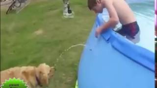 Most funny videos latest 69