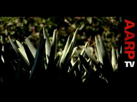 AARP TV: Guerilla Gardeners