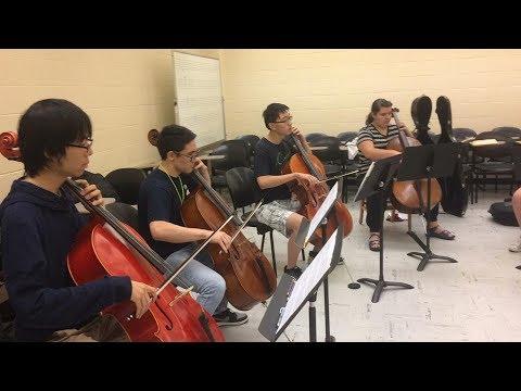 Summer Music Institute Chamber Strings