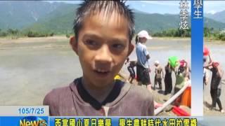 西富國小夏日樂學 學生農耕時代水田拉雪橇
