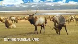 Tour USA: Montana E Wyoming - Utat Viaggi