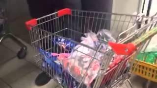 Хрюши против СПб - Утилизация в магазине Пятерочка просрочки ул Проспект оптики 47