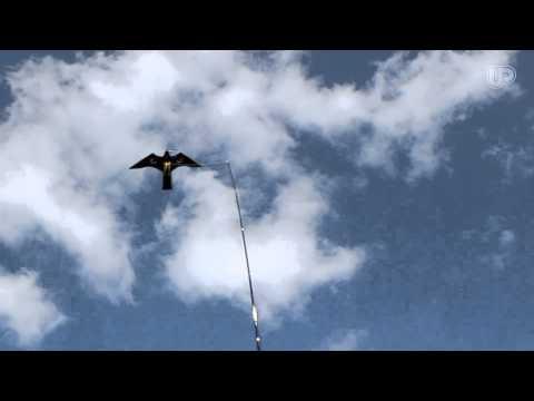 Bra Fågelskrämma Höken - YouTube ZR-57