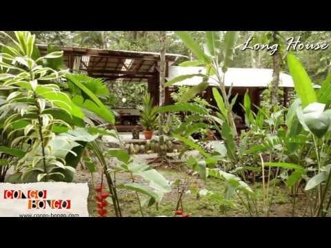 Congo Bongo Long House Manzanillo Beach House Rental Costa