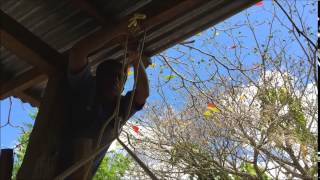 Hammock Chair Installation Video Guide