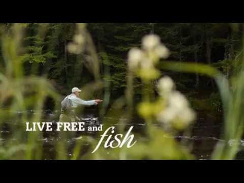 Fly Fishing in New Hampshire's Great North Woods