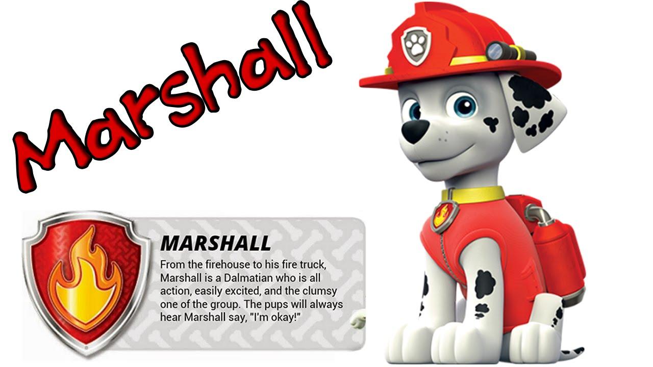 Cómo Dibujar Paso A Paso A MARSHALL, De La Patrulla Canina