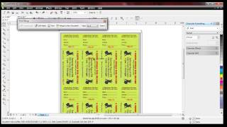 Raffle ticket numbering with Number Pro and Corel Draw