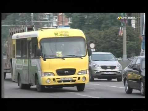 В Краснодаре с начала года за нарушения уволили 50 водителей маршруток