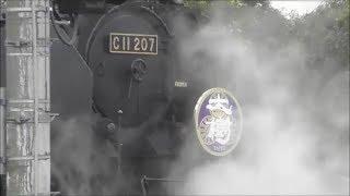 東武鉄道 SL『大樹』撮影会 in 南栗橋車両管区