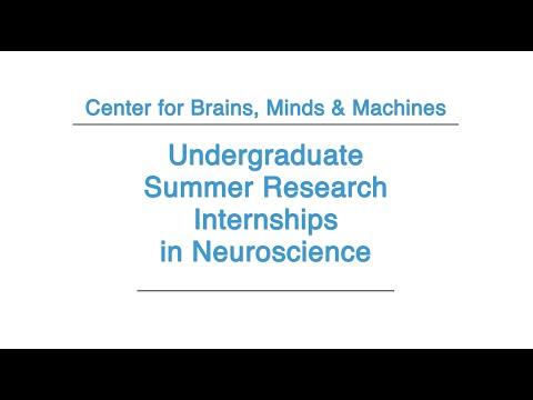 Undergraduate Summer Research Internships in Neuroscience