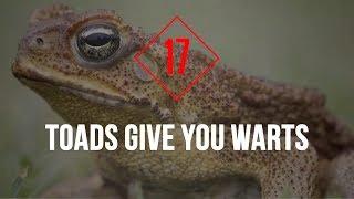 25 Lies That You Still Believe