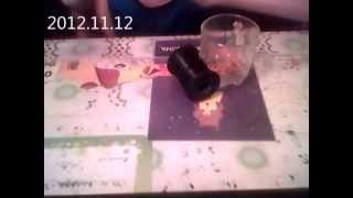 Видеоурок кольцо из бисера