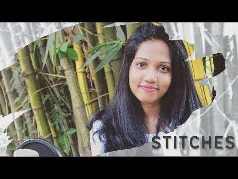Shawn Mendes - Stitches | Cover by Dashmi