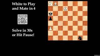 Computer-Generated Chess Problem 01692