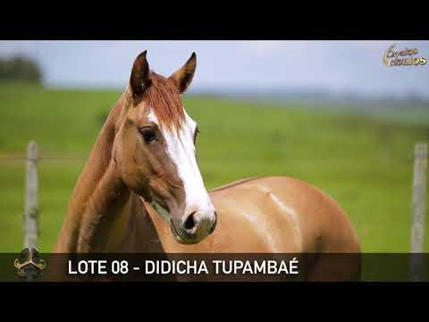 LOTE 08   DIDICHA TUPAMBAÉ