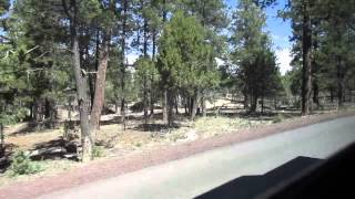 Grand Canyon Shuttle Buses: Village Route: From Center Road to Visitor Center