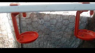 Nipel suluk sistemi