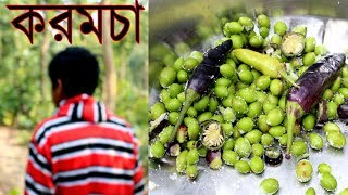 Karamcha - Finding Natural & Unknown Jangal Food in Indian Forest | Village healthy fruit
