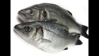 How To Pan Frying Fish