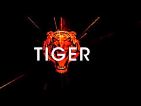 R3hab Vs Skytech & Fafaq - Tiger (Official Audio)