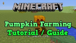 Minecraft PS3 + PS4: Pumpkin Farm Tutorial (