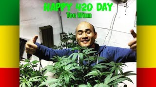 It's Tee Winn's special day as he celebrates 420 with some Buffalo ...