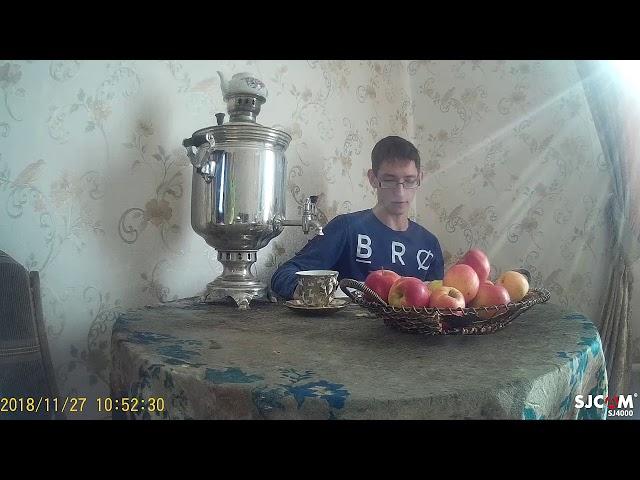 Изображение предпросмотра прочтения – КириллГончаров читает произведение «Как хороши, как свежи были розы...» И.С.Тургенева
