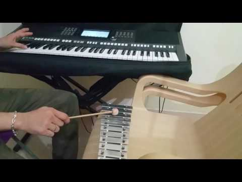 My experiment with my xylophone...love its sweet sound a lot..