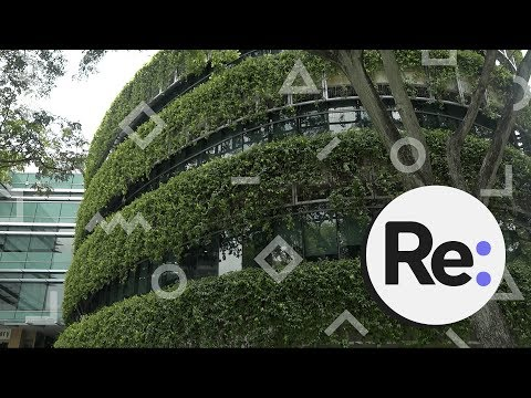 How Singapore uses technology to look after trees