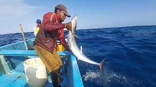 Fishing For Wahoo H๐w To Catch Any Fish Tuna Fish Amazing Fishing Video In Indian Ocean