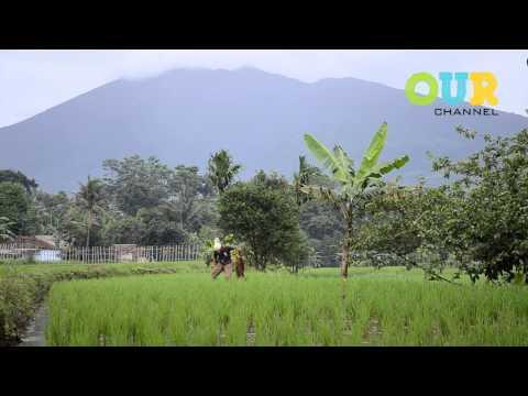 Checking Out : Desa Sawah (Bogor, West Java, Indonesia)
