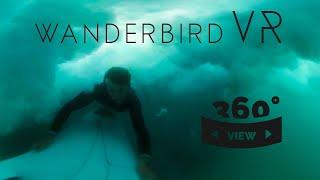 360° Surfing - Torrey Pines, La Jolla, Black's Beach, San Diego