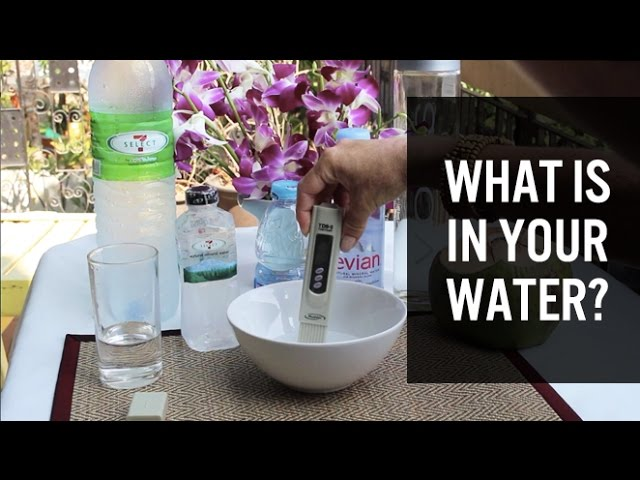 What is in your water? - TDS water test