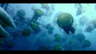 Oceans - trailer - New Zealand