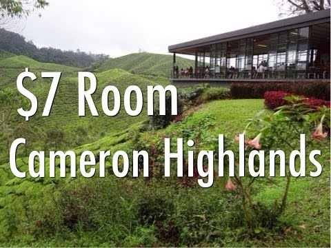 My $7 A Night Budget Room In The Cameron Highlands, Malaysia - Twin Pines Guesthouse, Tanah Rata