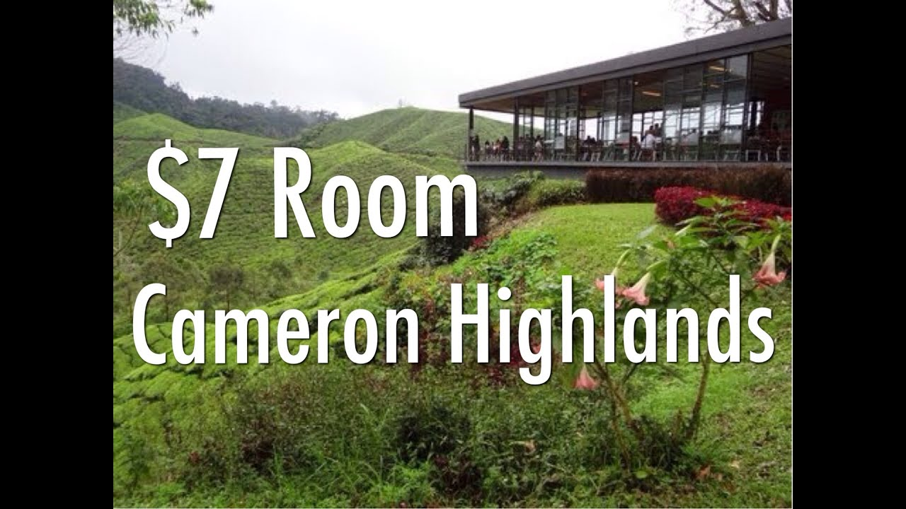 My 7 A Night Budget Room In The Cameron Highlands Malaysia Twin Pines Guesthouse Tanah Rata