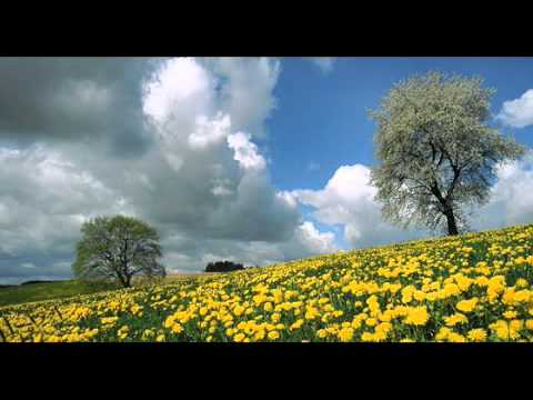 Richard Wagner - Parsifal: Good Frday Music