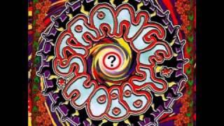 Strange Hobby - Ice in the Sun (Arjen Lucassen from Ayreon - Status Quo cover)
