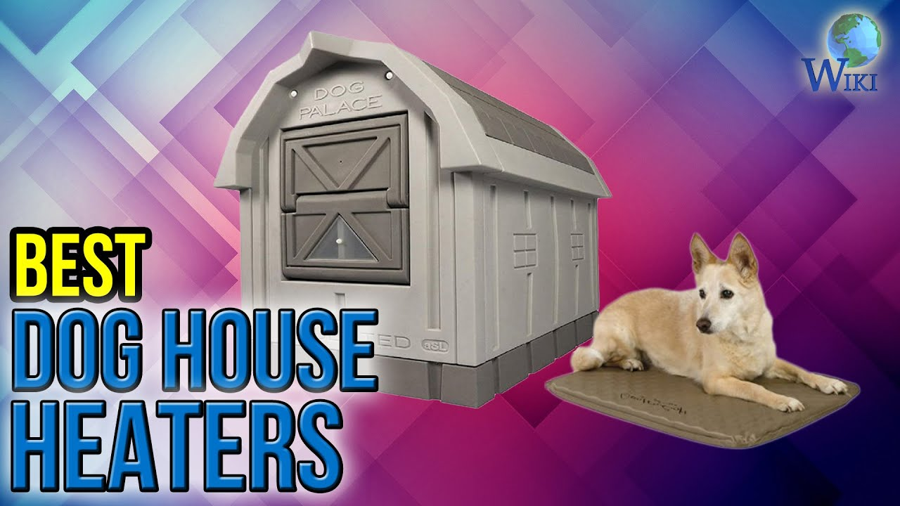6 Best Dog House Heaters 2017 Youtube
