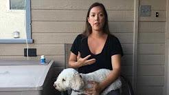 Canna-Pet Testimonials
