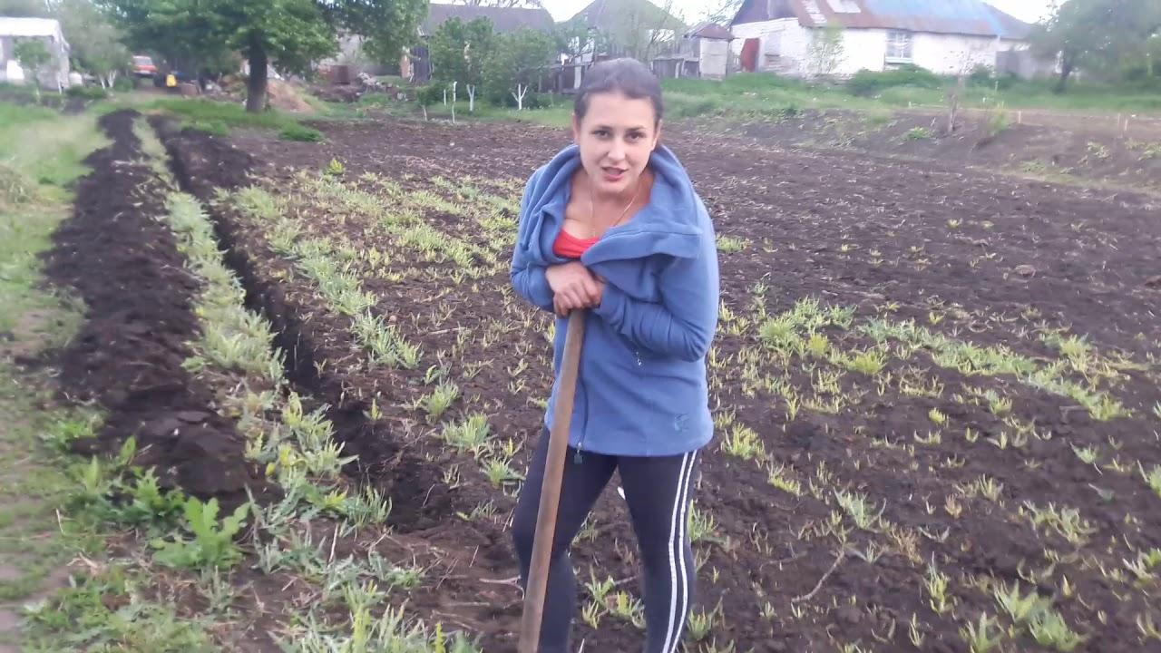 полить огород помощь