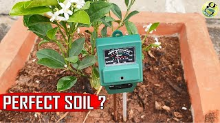 PERFECT SOIL PH: 10 Natural Ways to Achieve Ideal PH for Plants