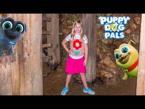 PUPPY DOG PALS Bingo and Rolly Lost and Found in a cave by The Assistant