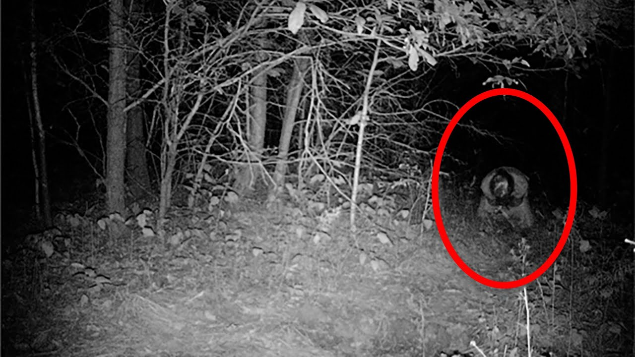 10 Creepy Paranormal Events Caught on Tape   YouTube