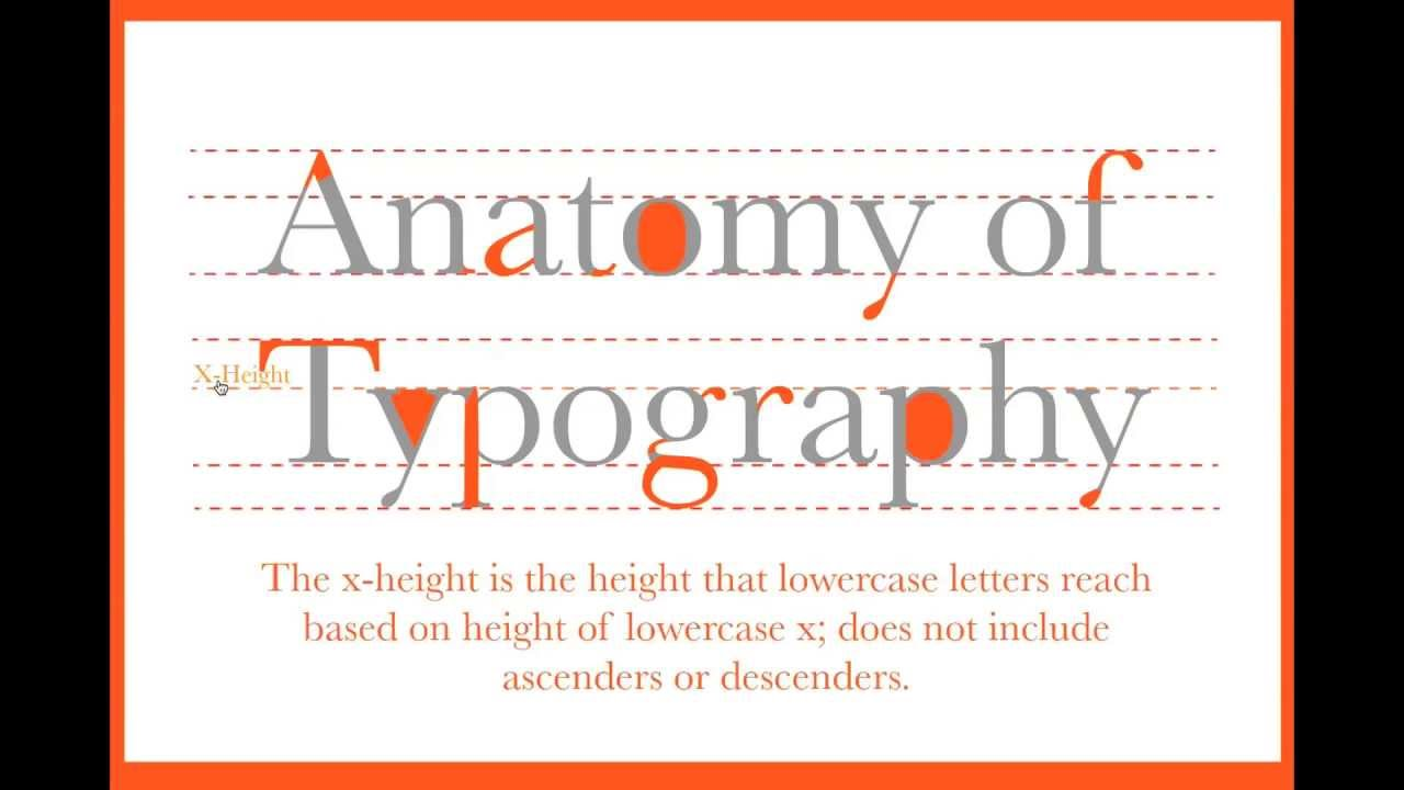 Anatomy of Typography Study Guide - YouTube
