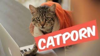 CATPORN - MANU MAIS PAS TROP
