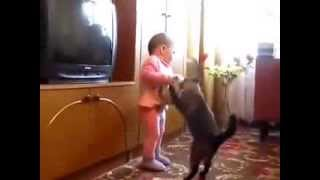 Кошка забирает котенка у малыша