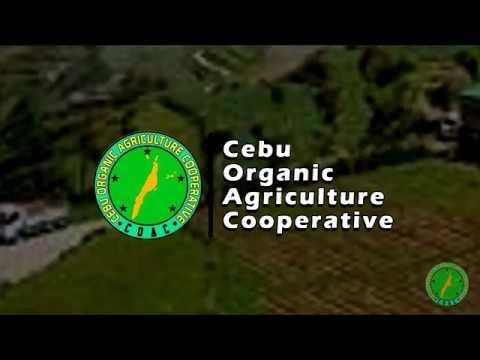 Cebu Organic Agri Coop